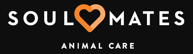 SoulMates Animal Care - Dog Walking, Daycare, and Sitting Services